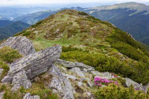 Leaoata Mountains, Romania